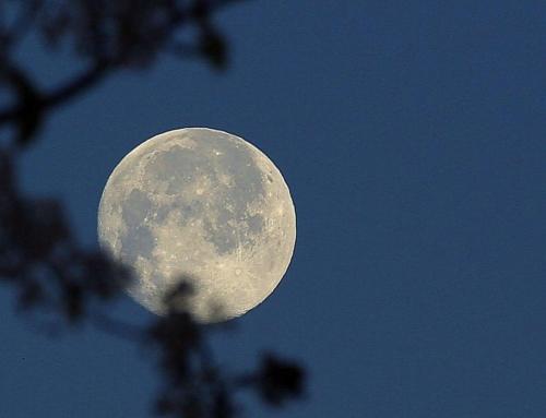 Rilasciare le emozioni tossiche portate in superficie dalla Luna Piena del 2 marzo