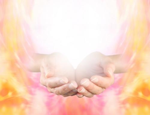 Clearing sul perdono
